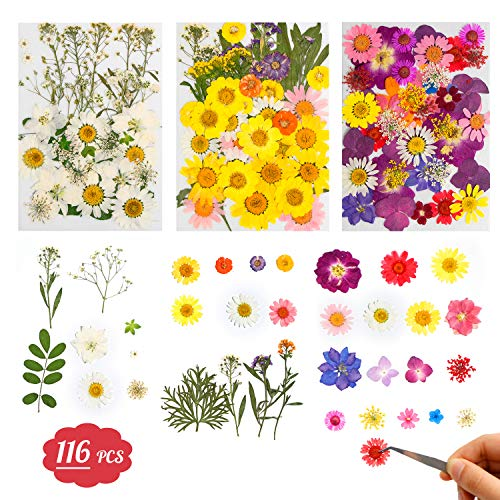 Dried Flowers-116 PCS Natural Dried Flower Herbs Kit for Bath, Soap Making, Candle Making and Resin Jewelry Making Art Floral Decors