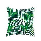 Lumanuby - 1 funda de cojín de plumas de palmera de franela para sofá, cama o coche, decoración para casa, oficina, hotel, cafetería, 45 x 45 cm