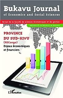 Province du Sud-Kivu (RDcongo) Enjeux économiques et financiers (French Edition)