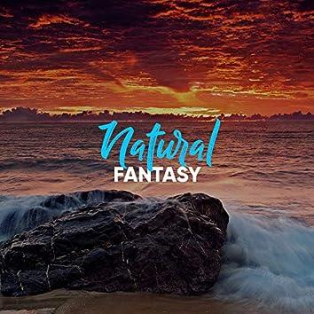 # 1 Album: Natural Fantasy