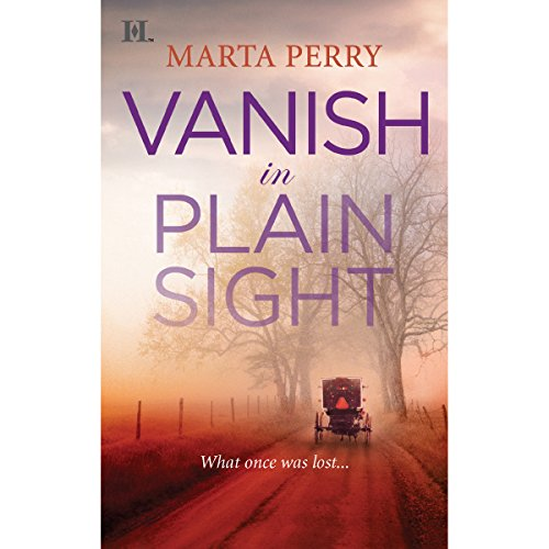 Vanish in Plain Sight audiobook cover art