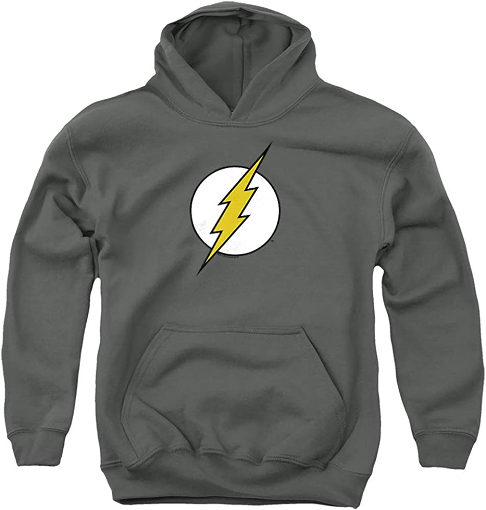 DC Flash Flash Logo Unisex Youth Pull-Over Hoodie, Charcoal, X-Large