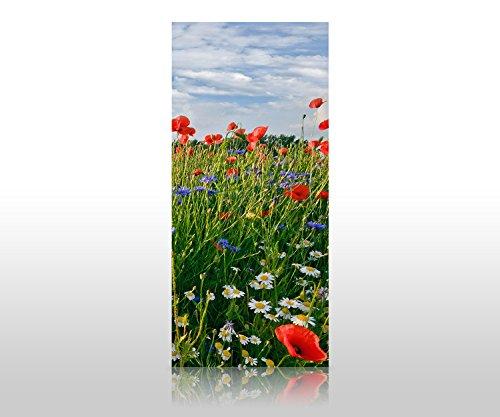 wandmotiv24 Duschrückwand Blumenwiese 90 x 200cm (B x H) - Acrylglas 4mm Duschwand Design, Wanddeko für Dusche & Bad, Fliesen-Abdeckung, Deko-Set Duschkabine M0493