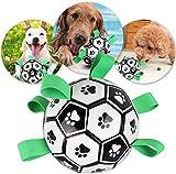 Yangers Hundespielzeug Fußball, Mensch Hund Outdoor Park Interaktion Übung Kick werfen Bälle für kleine mittelgroße Hunde Holen