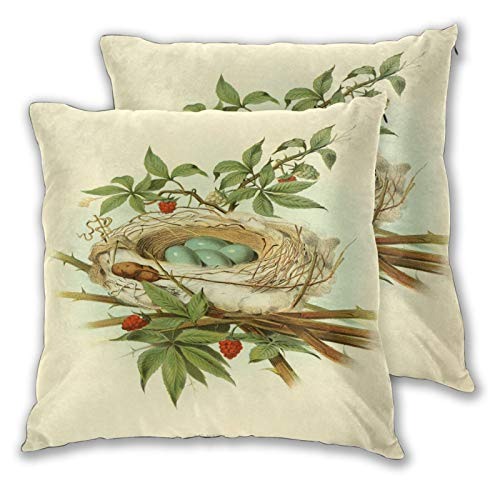 ALLMILL Juego de 2 Decorativo Funda de Cojín,Ramas Hojas Verdes Frutos Rojos Nidos Pájaros Huevos Pájaros,Funda de Almohada Cuadrado para Sofá Cama