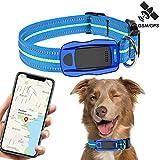 Traceur GPS Chien pour Animaux et Système de Temps réel Localisation étanche Anti-Perdu Collier GPS Chats et Chiens avec Suivi d'Activité et Autonomie pour léger et étanche Compatible iOS Android