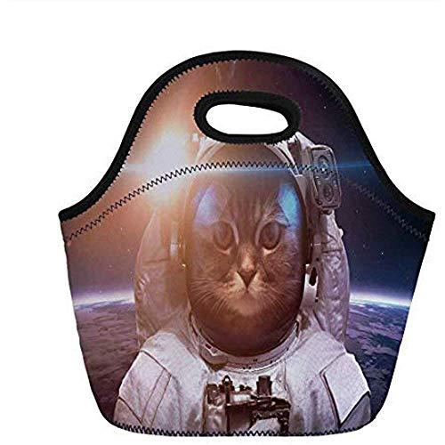 Romeinse kat, tapiere astronauten-huurskat in een ruimtelijk pak over de wereld met maanachtergrond, wit en blauw, voor kinderen erwt. Thermisch geïsoleerde draagtassen.