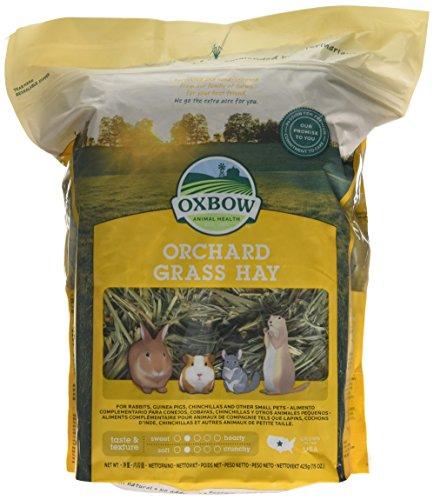 Oxbow Frutteto Erba Fieno, 425 g