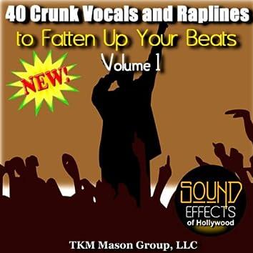 40 Crunk Vocals And Raplines To Fatten Up Your Beats - Volume 1