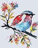Pintura por Números Pájaro de color animal diy lienzo pintura al óleo sobre lienzo decoración del hogar para sala de estar 40x50 cm(Sin Marco) -HYS185