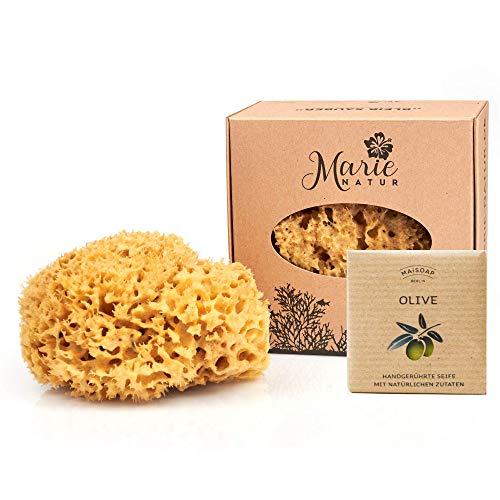 Set de esponja natural con jabón natural – Embalaje libre de plástico – Esponja de baño sin blanquear Marie Natur del Mediterráneo con cordón – (14 cm)