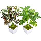 YOLETO 2 Pack Artificial Plants in Pots for Home Decor Indoor Aesthetic, Small Décor Faux Fake Plant for Desk and Shelf in Bathroom / Bedroom / Living Room / FarmhouseDecorations