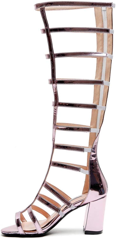SaraIris Women's Cut Out Gladiator Zip Up Glitter Block High Heel Sandals
