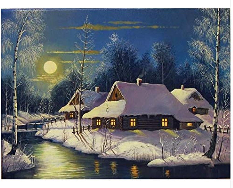Agolong DIY Malen Malen Malen Nach Zahlen Schnee Landschaft Acrylgemälde Moderne Bild Home Decor Für Wohnzimmer Mit Rahmen 40x50cm B07M8WDBQ9   Gemäßigten Kosten  e498aa
