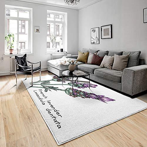 TNIIFICY 3D Gedruckte Bodenmatte,Nachtteppiche,French Lavender Lavandula Dentata Botanical Drawing In Colored Pencil,Bodenteppich,Polyesterfaser,Wohnzimmerteppich,Rutschfester Teppich