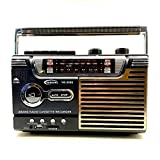 YourBooy High-Fidelity-Retro-FM-Radio,...