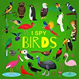 I Spy Birds: A Fun Guessing Game Picture Book for Kids Ages 2-5, Toddlers and Kindergartners ( Picture Puzzle Book for Kids ) (I Spy Books for Kids 4)