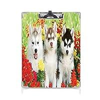 クリップボード 犬の恋人の装飾 ミニバインダー 芝生に3つのシベリアンハスキーの子犬花草自然アウトドア夏家族の友人 用箋挟 クロス貼 A4 短辺とじ