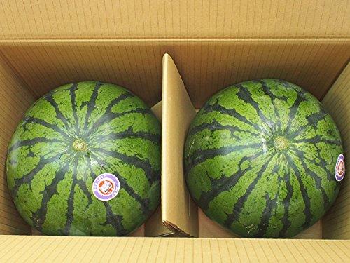 熊本県産 スイカ Lサイズ 2玉入り(1箱)