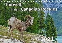 Tierwelt in den Canadian Rockies (Tischkalender 2021 DIN A5 quer): Wunderschoene, spektakulaere und emotionale Tieraufnahmen die beweisen, dass die kanadischen Rockies ein Paradies fuer Tier- und Naturliebhaber sind (Monatskalender, 14 Seiten )