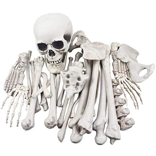 28 Pieces Skeleton Bones and Skull for Halloween Decor or Spooky Graveyard Ground Decoration
