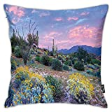 FULIYA Pillowcases,Sunset in a Mountain with Sun Beams Clouds Bushes and Colored Flowers Photo Print,Decorative Square Accent Throw Pillow Cushion Cover,18'x 18'