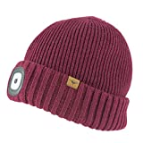 SEALSKINZ Unisex Waterproof Cold Weather Led Roll Cuff Beanie, Red, Small/Medium