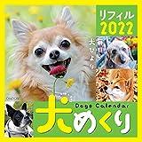 シーオーツー 犬めくり 2022年 カレンダー リフィル 日めくり CK-D22-02