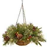 National Tree Company 'Feel Real' Pre-lit Artificial Christmas Hanging Basket | Flocked with Mixed Decorations and LED Lights | Colonial - 20 Inch