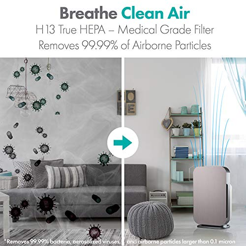 Alen FLEX Air Purifier,H13 True HEPA for Large Rooms up to 700 Sqft, SleepScore Validated, Dust, Mold, Pet Odors, Brushed Stainless