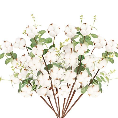 8 Pcs Tallo de Flores Secas Naturales Blancas Rama Flor Seca Algodon Artificiales con 6 Cabezas Bouquet Flores con Hojas de Eucalipto Decoracion para Boda Jarron Hogar Fiesta