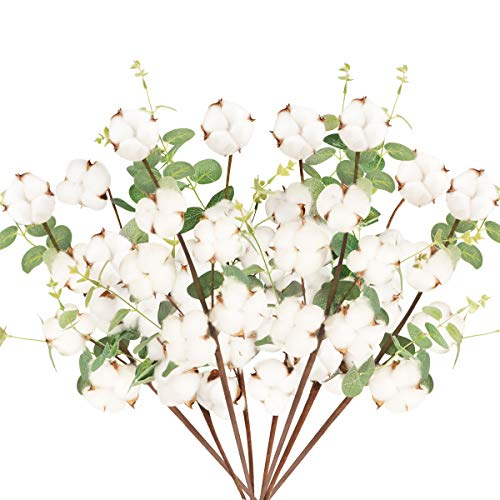 8 Pcs Tallo de Flores Secas Naturales Blancas Rama Flor Seca Algodon Artificiales con 6 Cabezas Bouquet Flores con Hojas de...