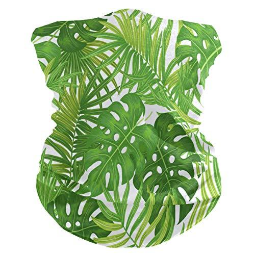 BIGJOKE Tropische Palmenblätter, Banane, winddicht, UV-Schutz, Gesichtsmaske, Bandanas, Kopftuch, waschbar, Halstuch für Damen, Herren, Outdoor-Aktivitäten, Staub, Yoga