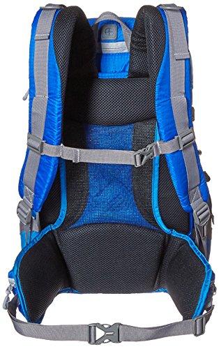 51ytZdSdXUL - AmazonBasics - Mochila para cámara, para senderistas - Azul