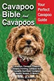 Cavapoo Bible and Cavapoos: Your Perfect Cavapoo Guide Cavapoos, Cavapoo Puppies, Cavapoo Training, Cavapoo Size, Cavapoo Nutrition, Cavapoo Health, History, & More!