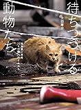 待ちつづける動物たち――福島第一原発20キロ圏内のそれから 福島第一原発20キロ圏内の記録