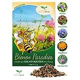 Semi per fioriere o giardino - Miscela multicolor - Fiori Perenni (Annuali) Paradiso delle Api - confezione da 10 g