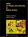 Atlas of Plants and Animals in Baltic Amber - Wolfgang Weitschat