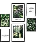 Heimlich Cuadros Decorativos - SIN Marcos -Decoración Colgante para Paredes de Sala, Dormitorios y Cocina - Arte Mural - 2 x A3 & 4 x A4-30x42 & 21x30 | » Nature Green Forest «