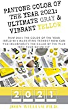 PANTONE COLOR OF THE YEAR 2021: ULTIMATE GRAY & VIBRANT YELLOW: Hоw Dоеѕ The Color Of Thе Year Influеnсе Mаrkеtіng Trends? How Can Yоu Inсоrроrаtе The ... Yеаr Intо Yоur Buѕіnеѕѕ? (English Edition)