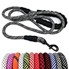 "MayPaw Heavy Duty Rope Dog Leash, 1/2"" x 6FT Nylon Pet Leash, Soft Padded Handle Thick Lead Leash for Large Medium Dogs Small Puppy"