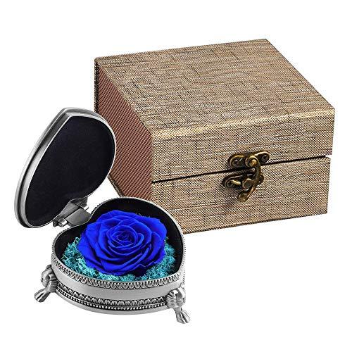 Ewige Rose Konservierte Blume mit Geschenkbox, Handgemachte Künstliche Blumenrose Geschenke Für Frauen zum Valentinstag, Hochzeitstag, Muttertag, Jubiläum, Weihnachten, Geburtstag (Blau)