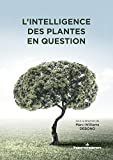 L'intelligence des plantes en question