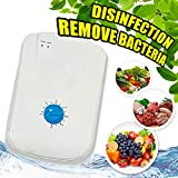 ARG HEALTH CARE Ozonizer Fruit and Vegetable Cleaner Air Purifier Machine Remover Pesticide Toxin