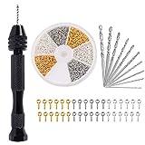 Gukasxi 711 piezas de Mini Taladro Manual Kit Taladro Mano modelismo de Herramientas incluye 10 mini brocas (0,8 a 3 mm), 700 piezas de pequeños tornillos para Madera, Resina, joyería, Nogal, ámbar