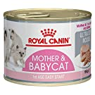 ROYAL CANIN First Age Mother & Babycat Mousse for Kitten 3 x 195g. and Little Kitten Gift