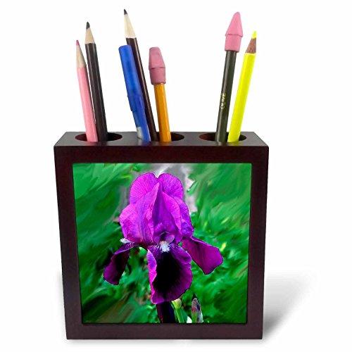 3dRose violett Iris Stifthalter Bild Fliesen, 12,7cm