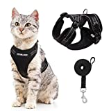 Best Cat Harnesses - EXPAWLORER Cat Harness and Lead Set - Reflective Review