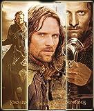 Close Up Herr der Ringe Poster Aragorn (32cm x 95cm)