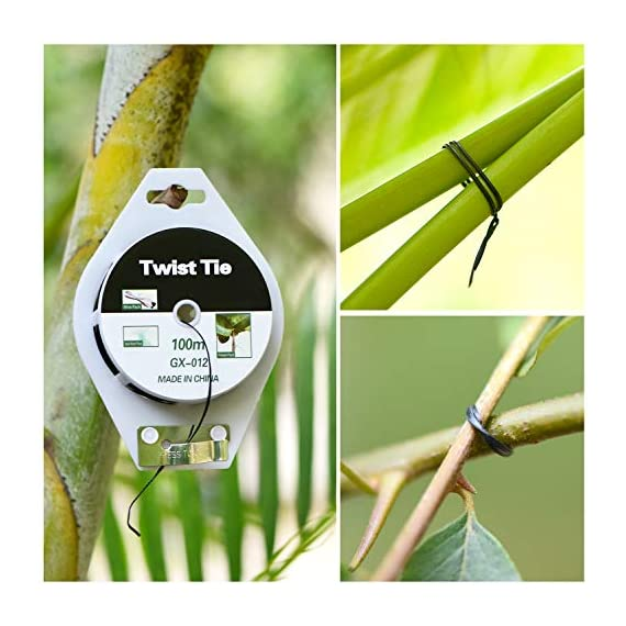 YDSL 328ft (100m) Twist Ties, Plant Ties for Vines Garden Wire with Cutter for Gardening Home Office, Multi-Function… 7 GREAT LENGTH & SUPERIOR MATERIAL】This garden wire is made from super quality green plastic - coating iron, which measures 328ft (100m) per reel, durable and enough to be used for long time. 【PROTECT PLANTS】 Our plastic coated wires with great length(328ft) are perfect for garden twist tie, and other plants to trellis, stakes, or any other supports. 【BEST ASSISTANT FOR YOUR HOME & OFFICE】 The plant ties function, our tie twist can be your great companion at home or the office, help you organize well the headphones lines, computer lines , mobile phone cables and others.